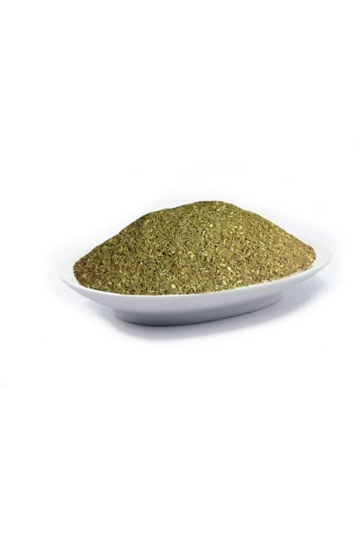 cebolinho-allium-schoenoprasum