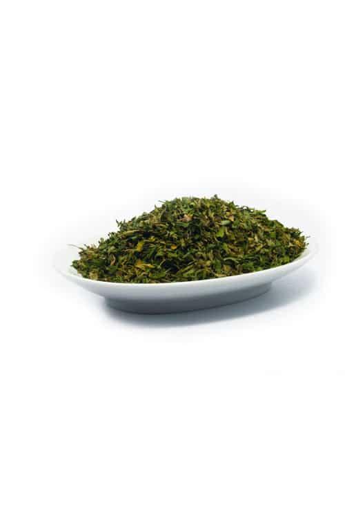 salsa-petroselinum-crispum
