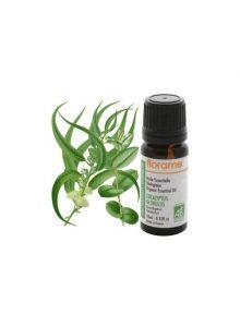 aromaterapia-florame-eucalyptus