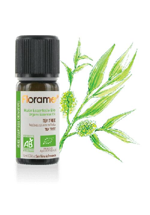 aromaterapia-florame-arvore-cha
