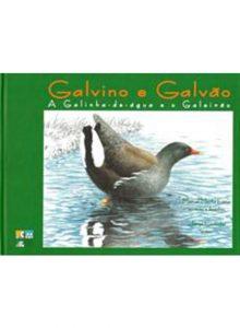 Galvino e Galvão