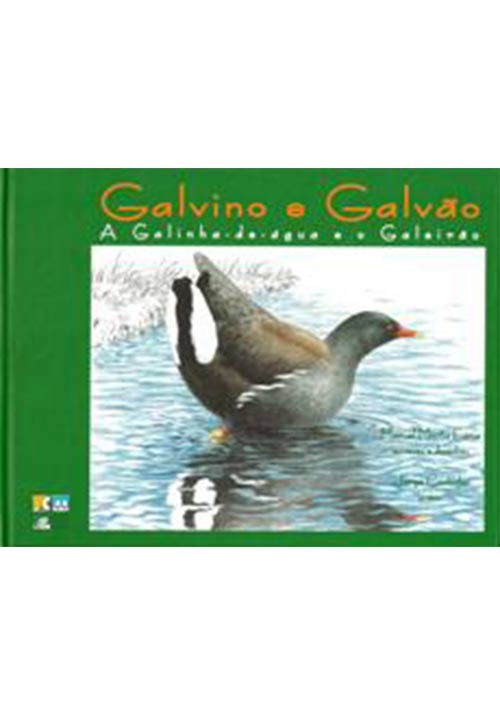 GalvinGalvao