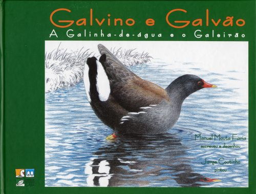 Galvino e Galvão - A Galinha-de-água e o Galeirão