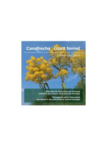 sementes-canafrecha-giant-fennel