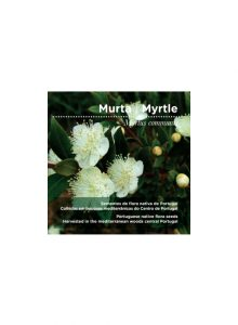 sementes-murta-myrtle