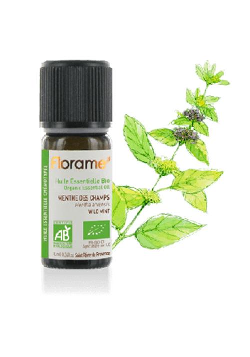aromaterapia-florame-menta