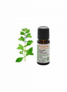 oleo-essencial-menta-Campo-Mentha-arvensis-florame