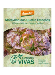 sementes-alface-maravilha-quatro-estacoes-lettuce-sementes-vivas