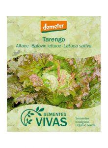 sementes-alface-tarengo-batavin-lettuce-sementes-vivas