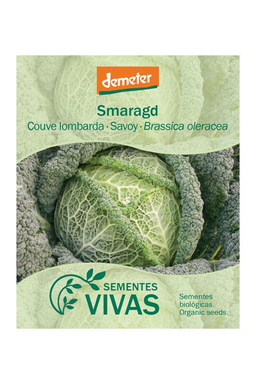 sementes-couve-lombarda-savoy-sementes-vivas