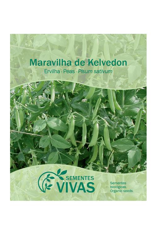 sementes-ervilha-peas-sementes-vivas