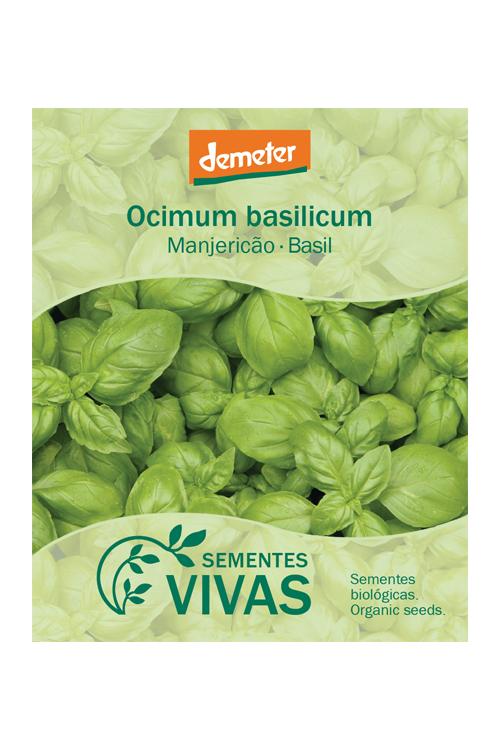 sementes-manjericao-basil-sementes-vivas