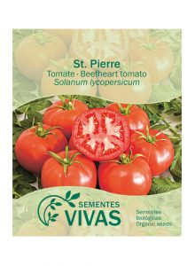 sementes-tomate-stpierre-beefheart-tomato-sementes-vivas