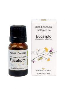 oleo-essencial-planalto-dourado-eucalipto