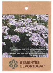 assembleias-sementes-portugal