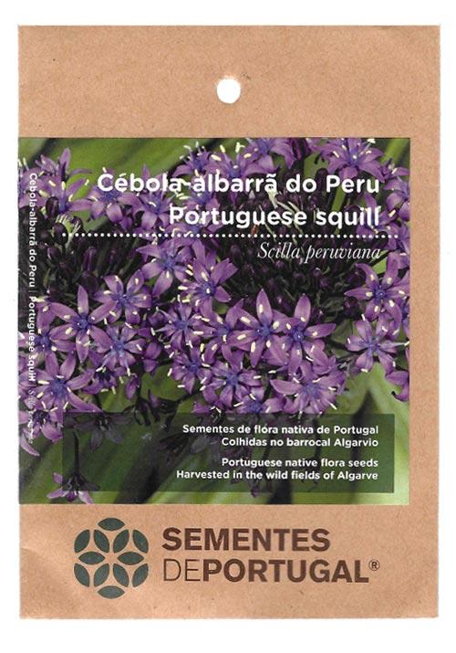 cebola-albarra-peru-sementes-portugal