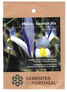 maios-sementes-portugal