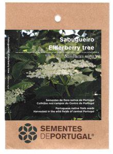 sabugueiro-sementes-portugal