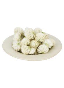 Perpétua branca a granel (flor)