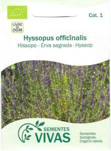 Hissopo-erva-sagrada-sementes-vivas