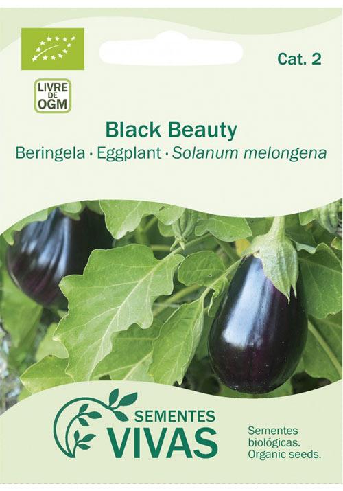 beringela-sementes-vivas