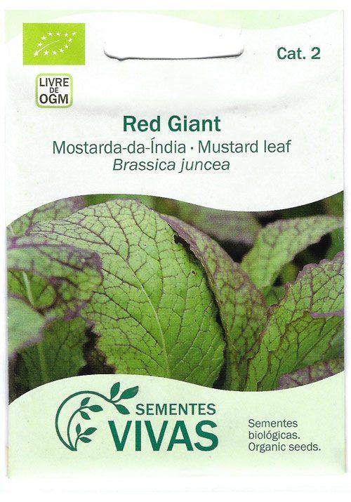mostarda-da-india-sementes-vivas