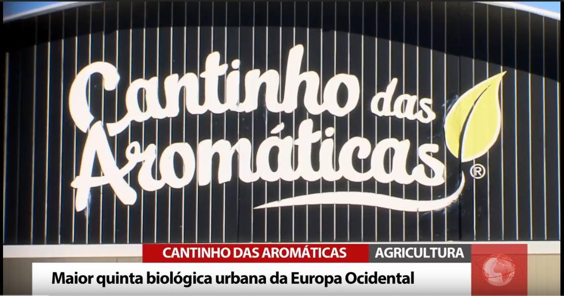 rtv_portugal