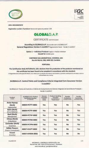 Certificado-GLOBAL-G.A