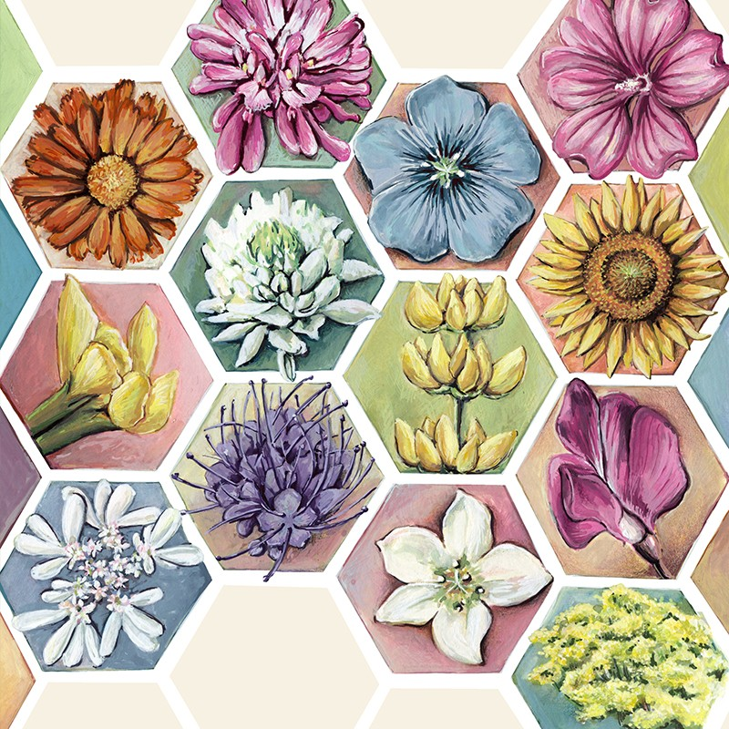mistura-de-flores-para-abelhas-bio–hl