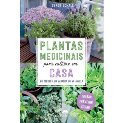 Plantas-Medicinais-Para-Cultivar-em-Casa