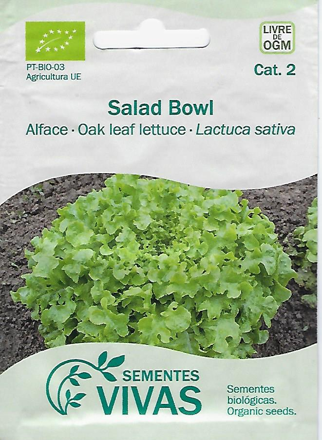 Alface Salad Bowl (002)