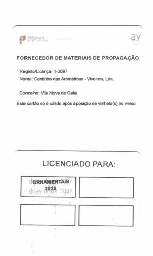 2020-viveiro